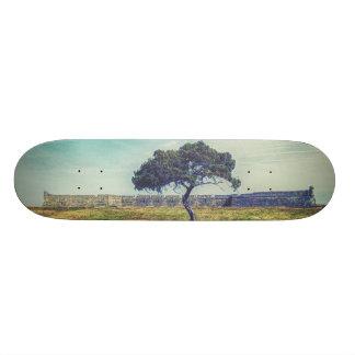 Eternal 21.6 Cm Skateboard Deck
