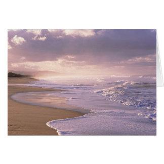 Eternity, Scenic Beach Sunset Greeting Card