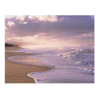 Eternity, Scenic Beach Sunset Postcard