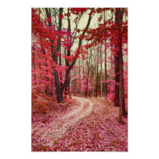 Ethereal Forest Path With Red Fall Colors Art Photo