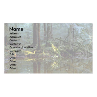 Ethereal pool in forest, Stillaguamish River, Wash Business Cards
