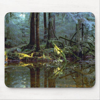 Ethereal pool in forest, Stillaguamish River, Wash Mouse Pad