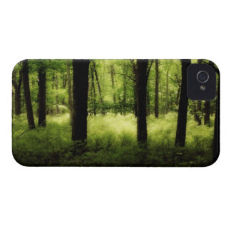 Ethereal Summer Woods iPhone 4 Cover