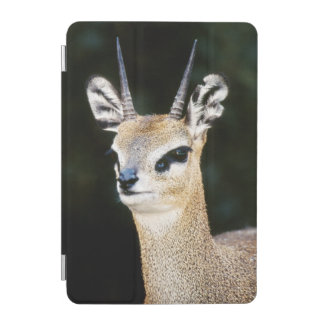 Ethiopia, Klipspringer looking away iPad Mini Cover