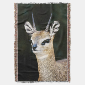 Ethiopia, Klipspringer looking away Throw Blanket
