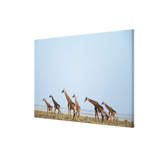 Etosha National Park, Namibia 2 Canvas Print