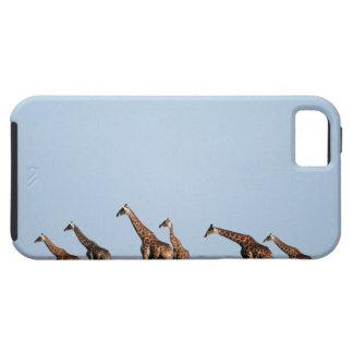 Etosha National Park, Namibia 2 iPhone 5 Case