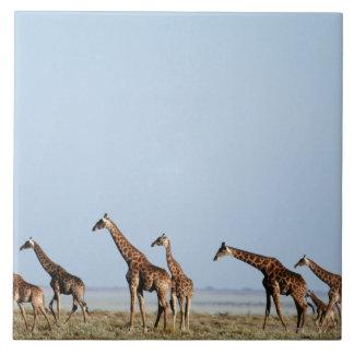 Etosha National Park, Namibia 2 Tile