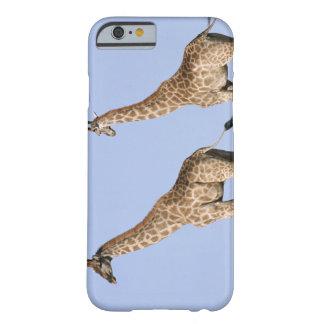 Etosha National Park, Namibia 3 Barely There iPhone 6 Case
