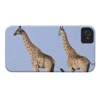 Etosha National Park, Namibia 3 Case-Mate iPhone 4 Case