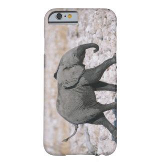 Etosha National Park, Namibia Barely There iPhone 6 Case