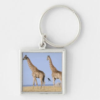 Etosha National Park, Namibia Key Ring