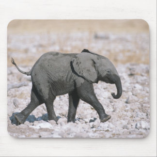 Etosha National Park, Namibia Mouse Mat