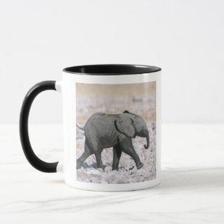 Etosha National Park, Namibia Mug