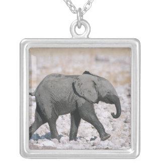 Etosha National Park, Namibia Silver Plated Necklace