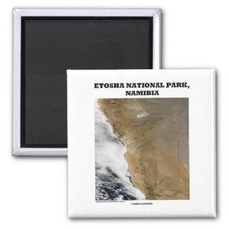 Etosha National Park (Picture Earth) Fridge Magnet