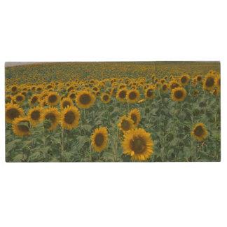 EU, France, Provence, Sunflower field Wood USB 2.0 Flash Drive
