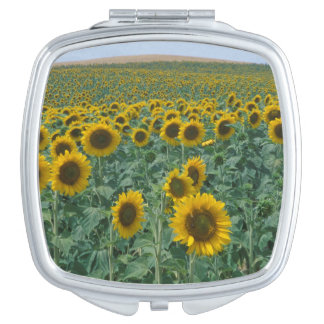 EU France Provence Sunflower field Mirror For Makeup