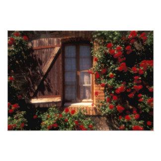 EU, France, Provence, Vaucluse, Apt. House Photo Print