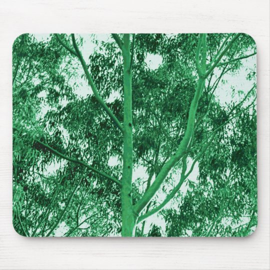 Eucalyptus Tree photo painting mousepad