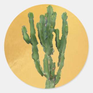 Euphorbia 'Cactus' Classic Round Sticker