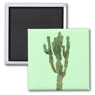 Euphorbia 'Cactus' Magnet