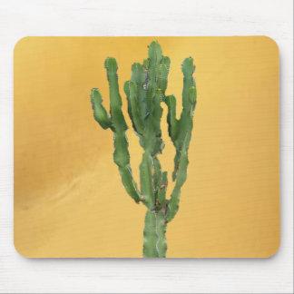 Euphorbia 'Cactus' Mouse Pad