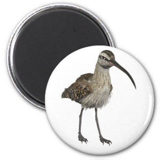 Eurasian Curlew 6 Cm Round Magnet