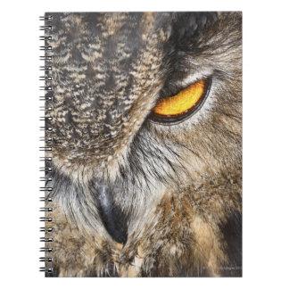 Eurasian Eagle Owl (Bubo bubo) Notebook