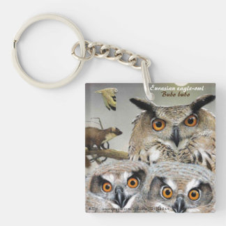 """""""Eurasian eagle-owl (Bubo bubo)"""" Single-Sided Square Acrylic Key Ring"""
