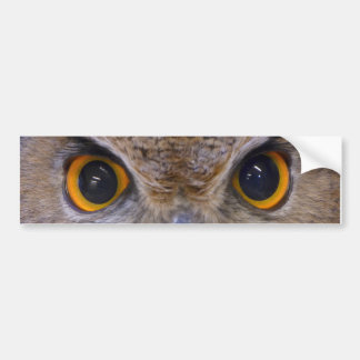 Eurasian eagle-owl bumper sticker