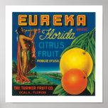 Eureka Brand Florida Citrus Fruit Poster
