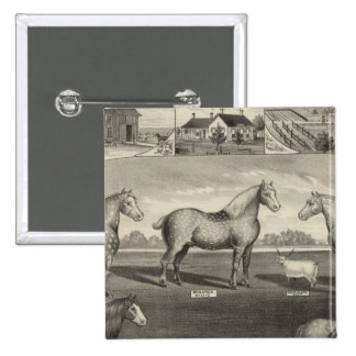Eureka Stock Farm, Scottsville, Kansas 15 Cm Square Badge