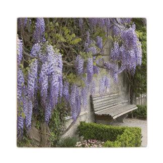 Europe, Austria, Salzburg Stadt, Salzburg, Maple Wood Coaster