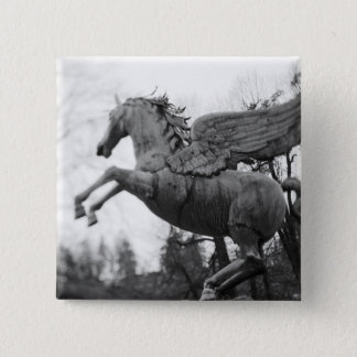 Europe, Austria, Salzburg. Winged horse statue, 2 15 Cm Square Badge