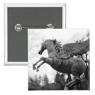 Europe, Austria, Salzburg. Winged horse statue, 2 15 Cm Square Badge