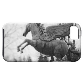 Europe, Austria, Salzburg. Winged horse statue, 2 Case For The iPhone 5