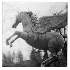 Europe, Austria, Salzburg. Winged horse statue, 2 Tile