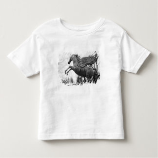 Europe, Austria, Salzburg. Winged horse statue, 2 Toddler T-Shirt