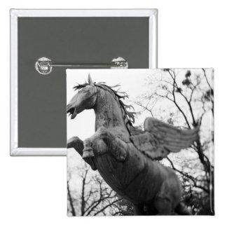 Europe, Austria, Salzburg. Winged horse statue, Pins