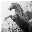 Europe, Austria, Salzburg. Winged horse statue, Tile