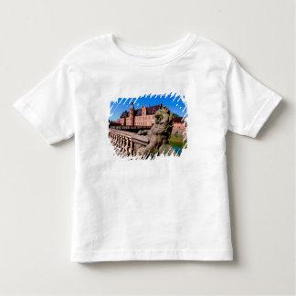 Europe, Denmark, Copenhagen aka Kobenhaven), Tee Shirt