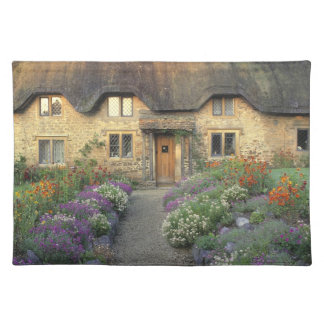 Europe, England, Chippenham. Early morning light Placemat
