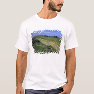 Europe, England, Hadrian's Wall. The stones of T-Shirt