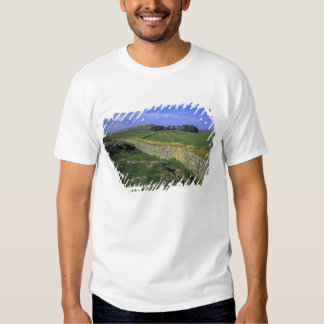 Europe, England, Hadrian's Wall. The stones of T-shirts