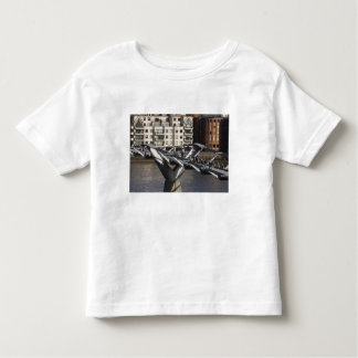 Europe,ENGLAND, London: View of the Millenium T Shirts