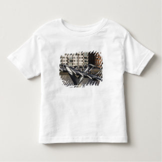 Europe,ENGLAND, London: View of the Millenium Tshirts
