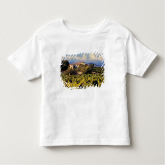 Europe, France, Bonnieux. Vineyards cover the T Shirts