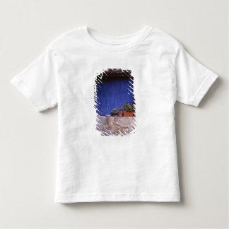Europe, France, Cereste. A blue door adds color Shirt