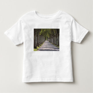 Europe, France, Cereste. Trees line this road Tee Shirt